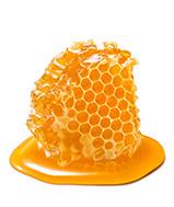 عسل | honey